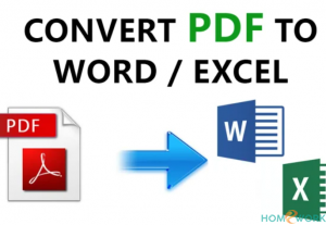 I will convert your PDF file to word or excel format